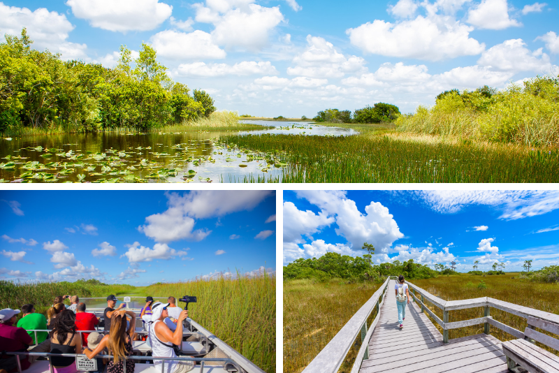 Orlando: tour delle Everglades in airboat di 2 ore