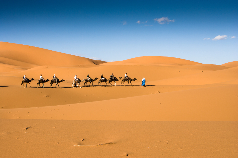 Zagora Desert day trips from Marrakech