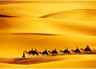 best Marrakech desert tours