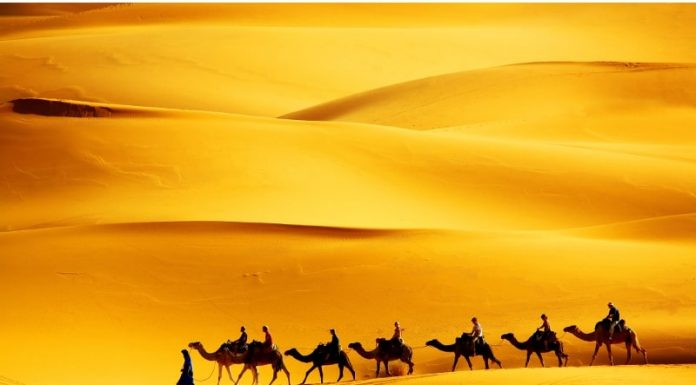 best Marrakech desert tours