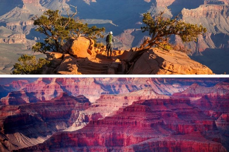 Ultimativer Grand Canyon Tagesausflug von Flagstaff oder Sedona