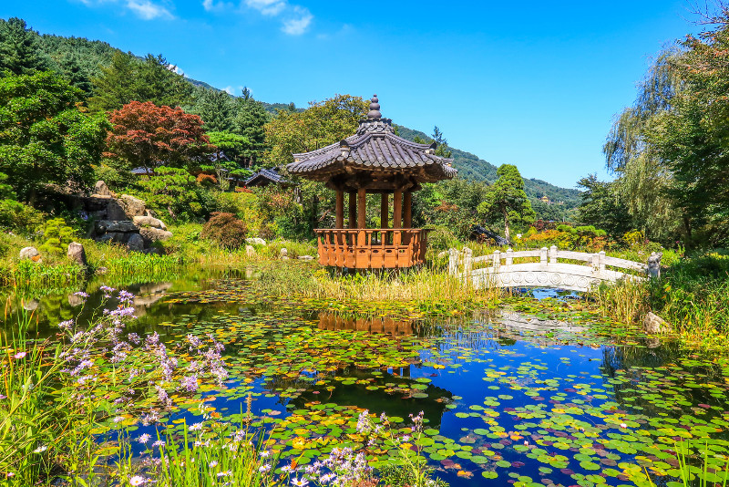 Garden of Morning Calm day trips from Seoul