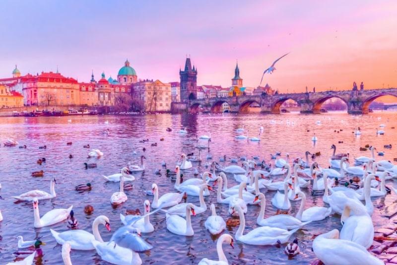 Prague river cruises travel tips