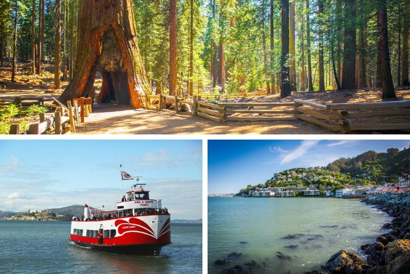 Alcatraz Tour más Muir Woods y Sausalito Day Trip