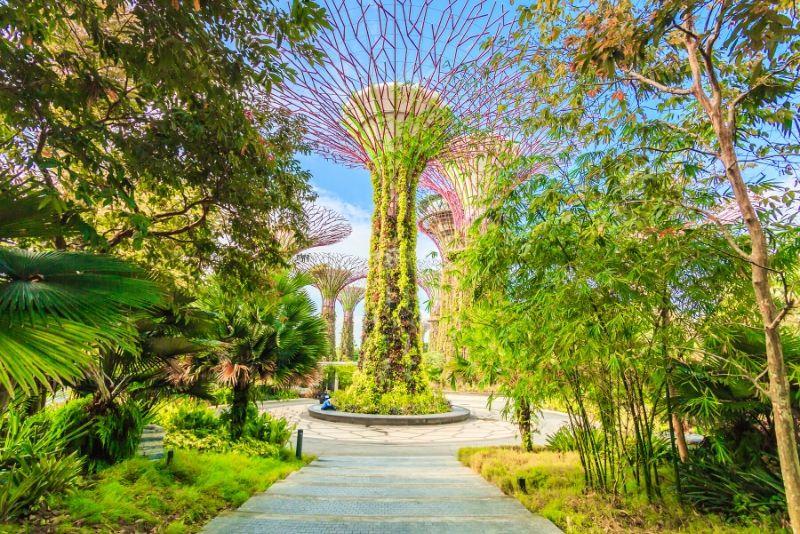 Gärten an der Bucht - wie kommt man dahin?