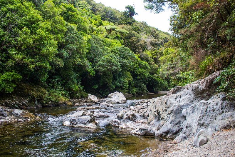 Kaitoke Regional Park, New Zealand