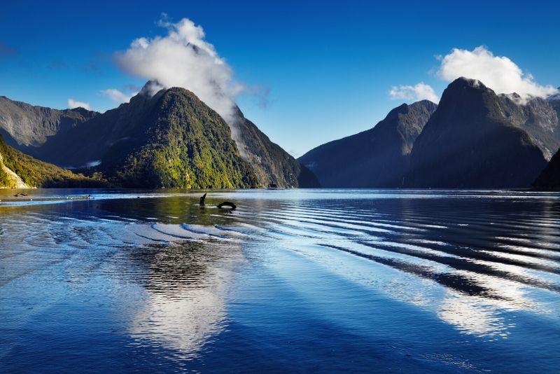 MIldorf Sound fiord, New Zealand