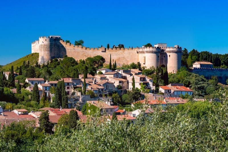 Villeneuve-lès-Avignon day trips from Marseille
