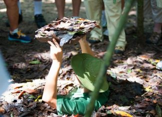 Cu Chi tunnels tours from HCMC