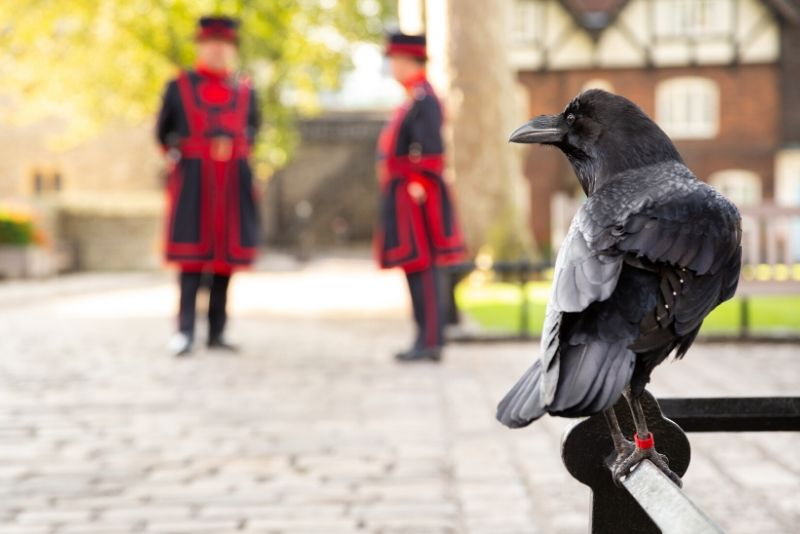 Tower of London - travel tips