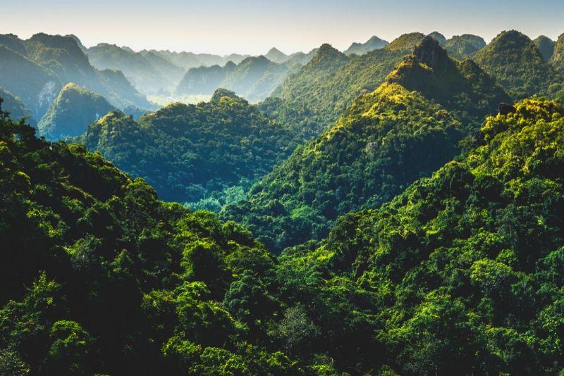 Parque Nacional Cat Ba, Vietnam - los mejores parques nacionales del mundo