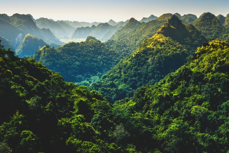 Cat Ba National Park, Vietnam - best national parks in the world