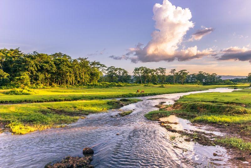 Parque nacional de Chitwan, Nepal: los mejores parques nacionales del mundo