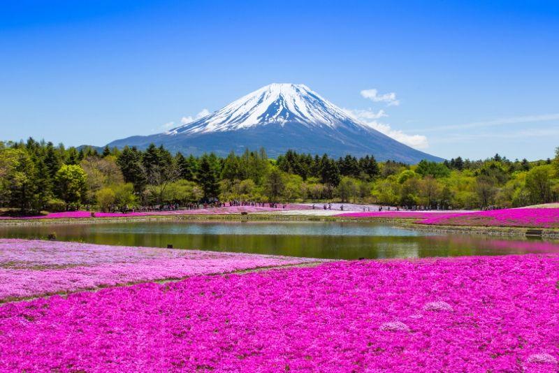 Parque Nacional Fuji Hakone Izu, Japón - los mejores parques nacionales del mundo