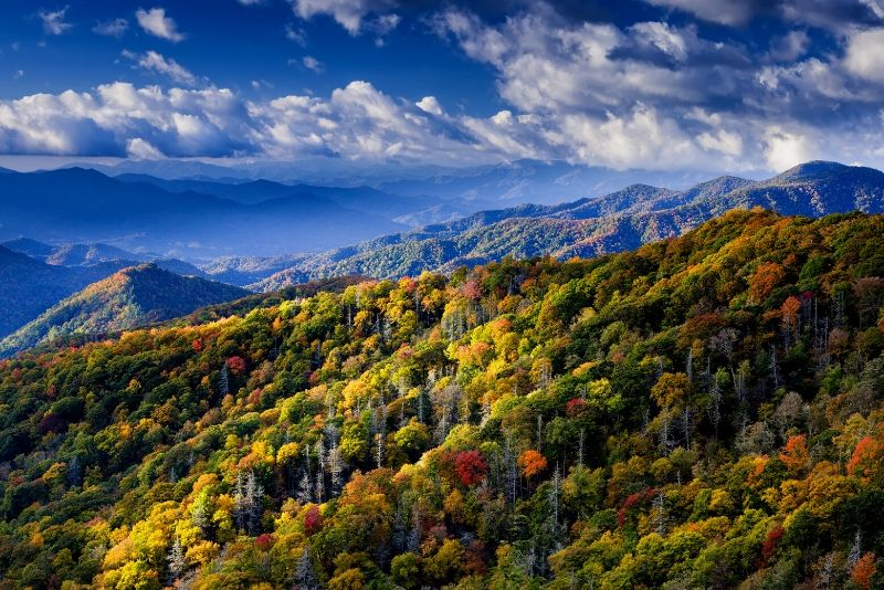Great Smoky Mountains National Park, United States of America - best national parks in the world