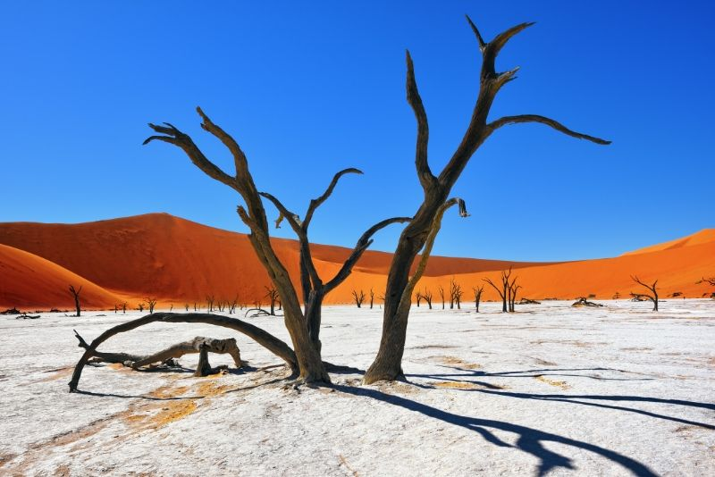 Namib-Naukluft National Park, Namibia - best national parks in the world