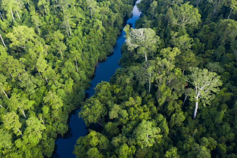 Parque Nacional, Malasia - los mejores parques nacionales del mundo