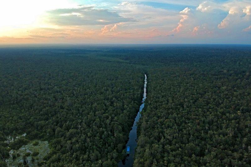 Parque Nacional Tanjung Puting, Indonesia: los mejores parques nacionales del mundo