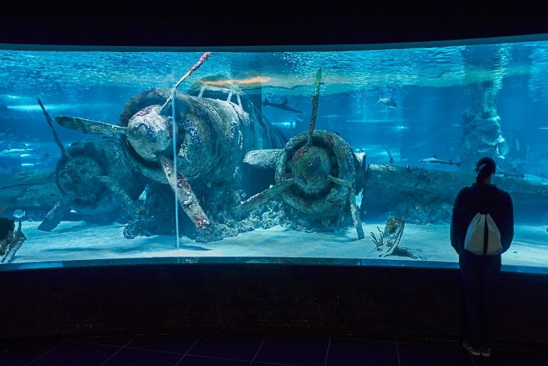 Antalya Aquarium, Turkey - #46 best aquariums in the world