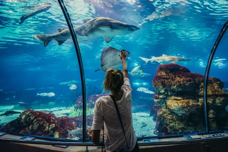 Aquarium Barcelona, Spain - #23 best aquariums in the world