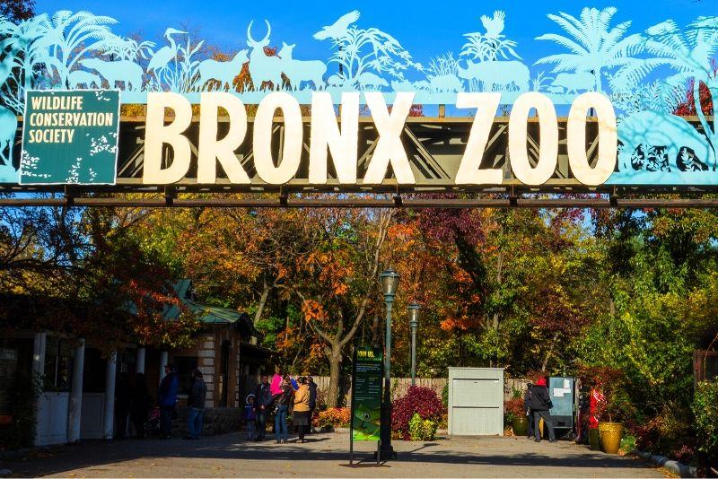 Bronx Zoo, USA