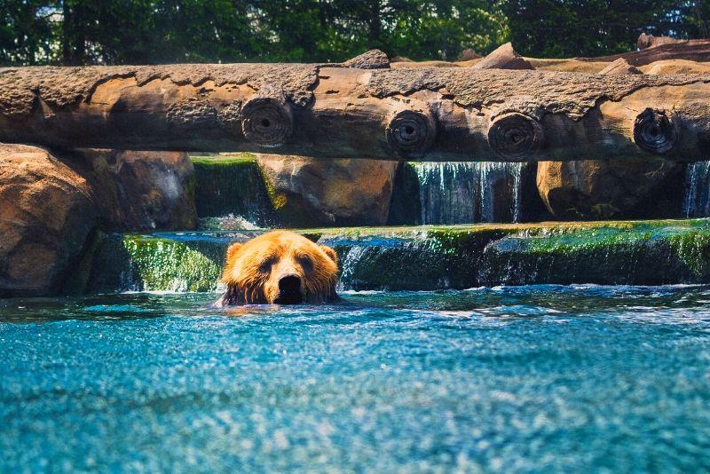 Columbus Zoo And Aquarium, USA