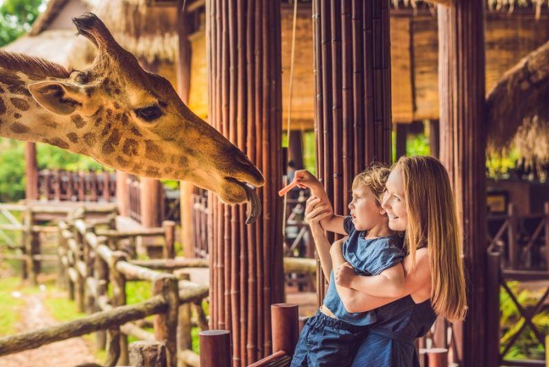Choses à faire en Belgique #38 Découvrez les animaux du Zoos d'Anvers et de Planckendael