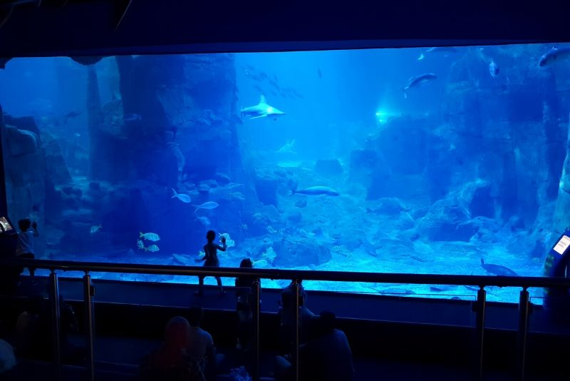 Istanbul Aquarium, Turkey - #22 best aquariums in the world