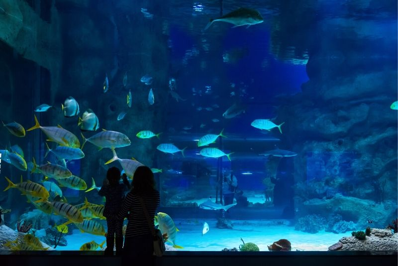 Moscow Oceanarium, Russia - #25 best aquariums in the world