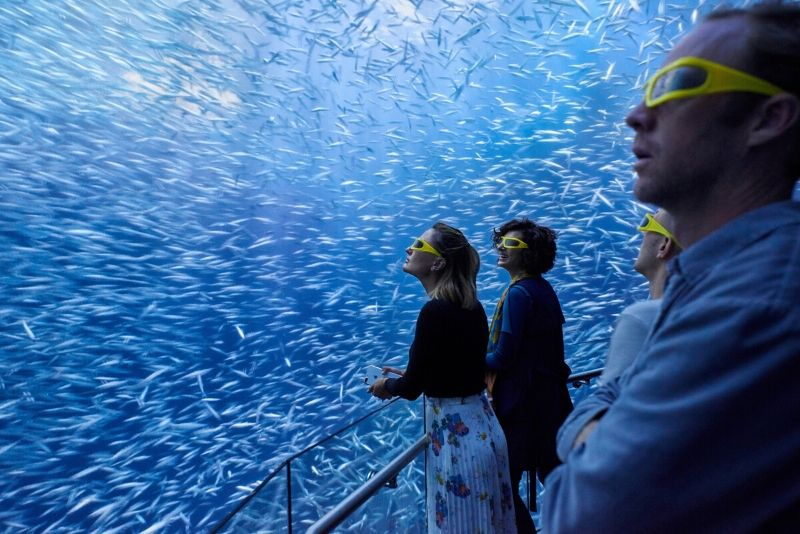 National Geographic Encounter, United States - #50 best aquariums in the world