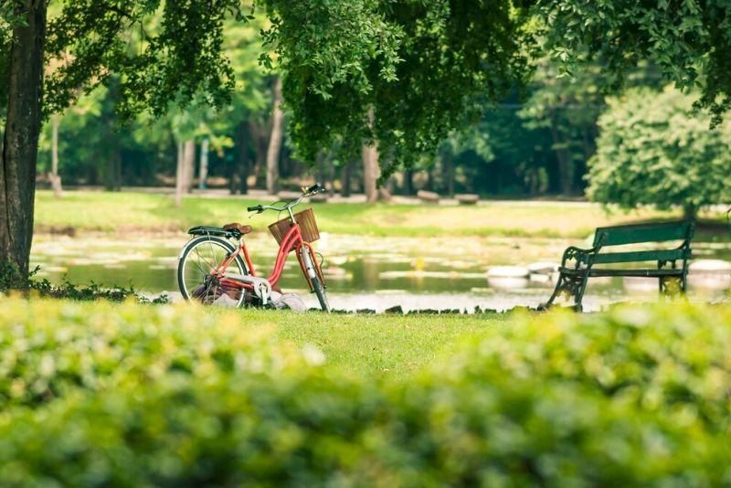 Sorties autour de Paris au parc départemental Georges-Valbon
