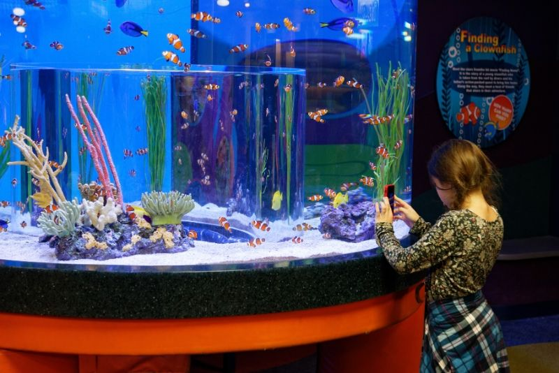 Ripley's Aquarium of Canada, Canada - #7 best aquariums in the world