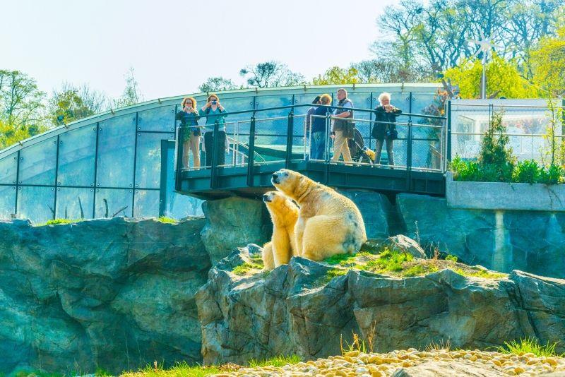 Schönbrunn Zoo, Austria