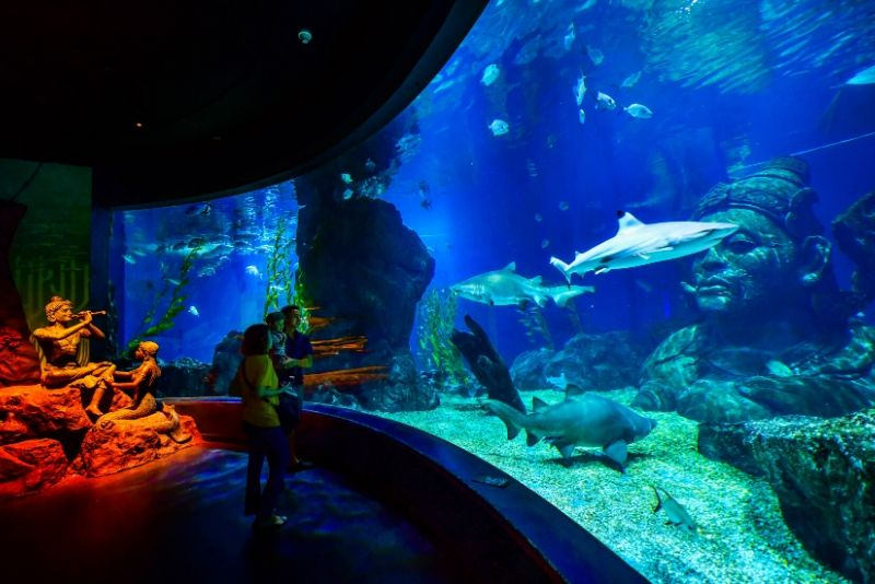 SEA LIFE Bangkok Ocean World, Thailand - #28 best aquariums in the world