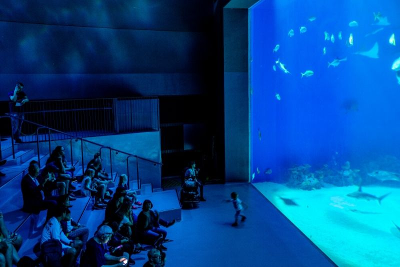 The Blue Planet, Denmark - #29 best aquariums in the world