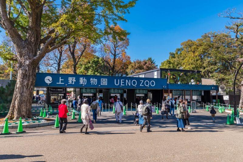 Ueno Zoo, Japan