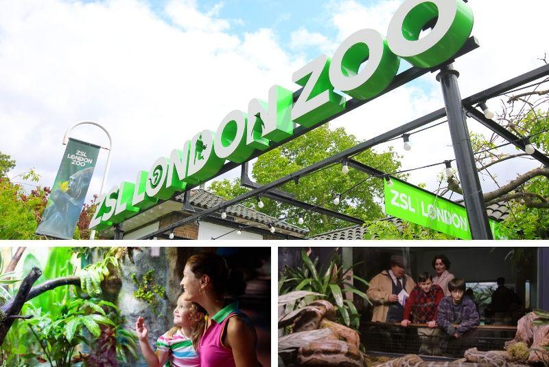 Zoo di Londra