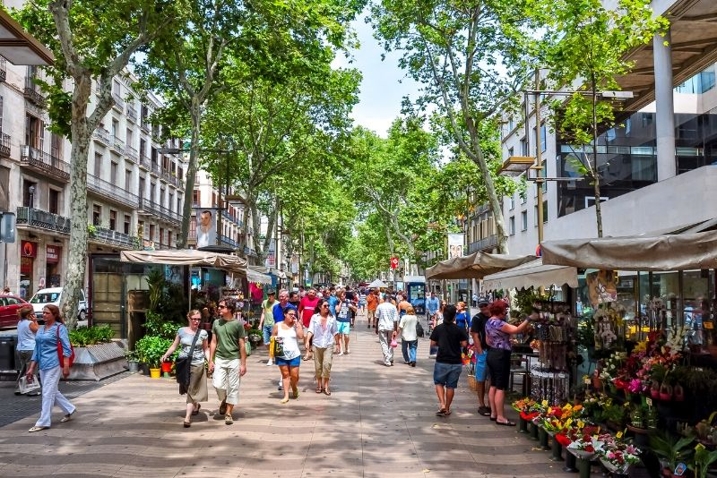 Secrets, Mysteries, and Conspiracies of Barcelona Tree Tour