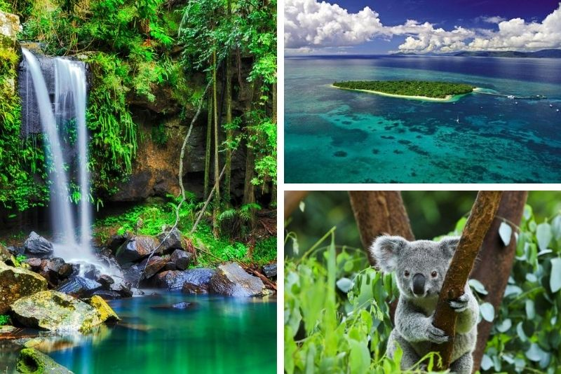 2-Day Reef and Rainforest Package Combo Green Island Cruise and Kuranda Day Trip