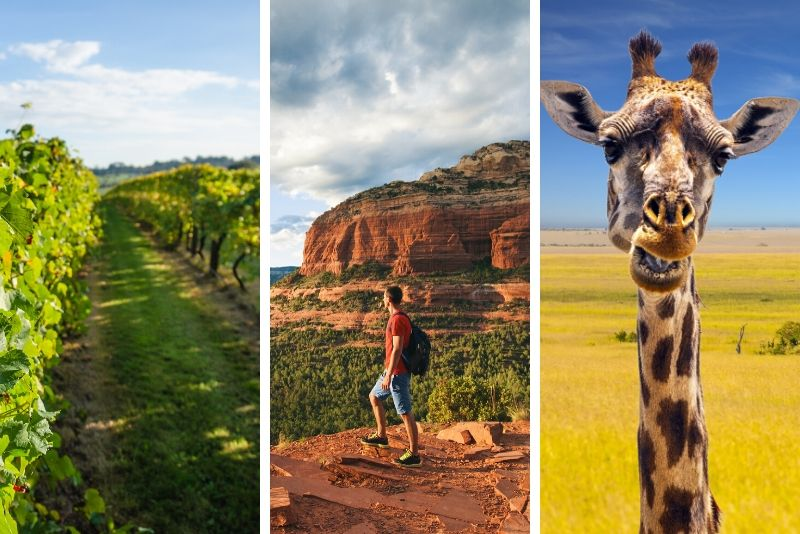 African Ambush Jeep Tour plus Winery Tour Combo in Camp Verde