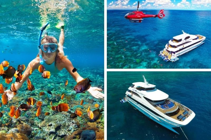 Cairns Outer Great Barrier Reef Full-Day Tour & Live Music
