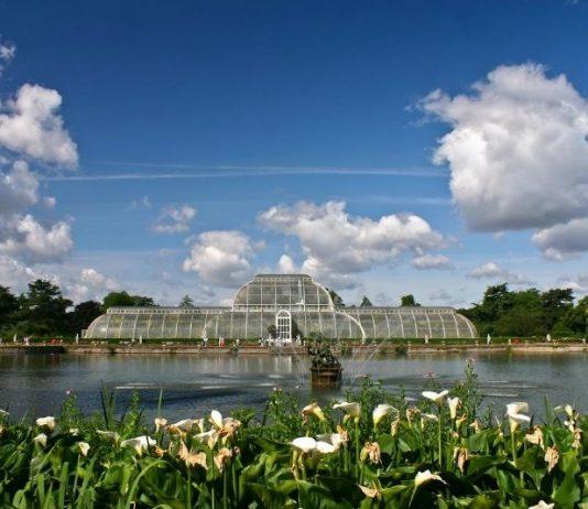 Kew Gardens tickets