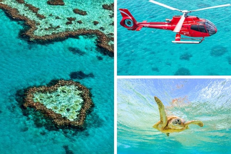 Outer Great Barrier Reef Cruise Including Scenic Heli Flight