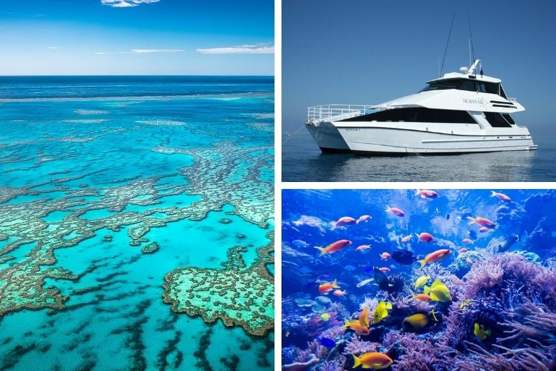 Premium Reef and Coral Cay Cruise at High Speed from Cairns
