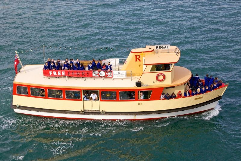 Sydney whale watching cruise price