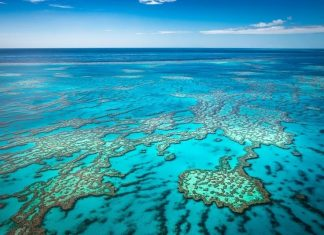 best Great Barrier Reef tours from Cairns