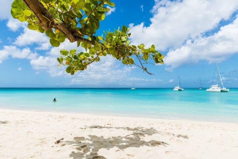 prix location de bateau en Guadeloupe