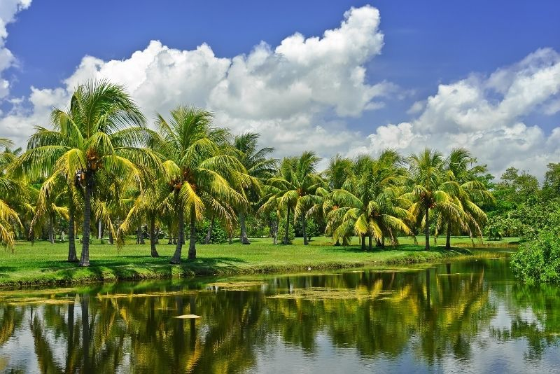 Jardín Botánico Tropical Fairchild, Miami, Florida