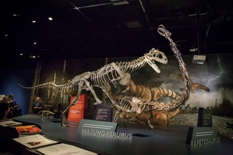 San Diego Natural History Museum, California
