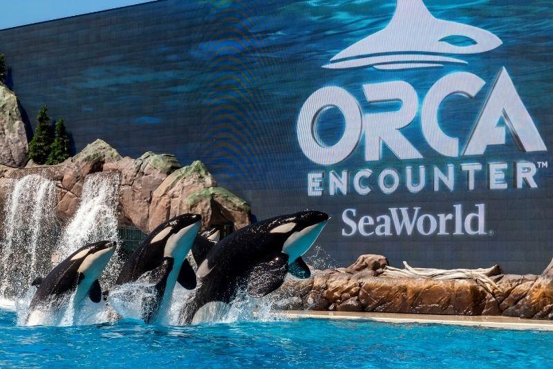 SeaWorld theme park in San Diego, California
